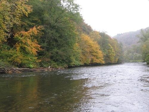 Wupper im Herbst