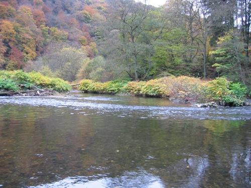 Wupper Landschaft im Herbst