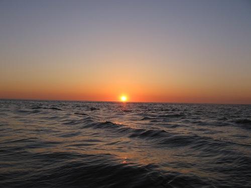 Abendliches Fischen in der Nähe von Renesse - Nordsee