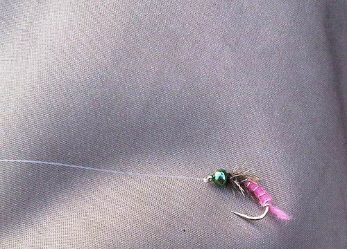 Pinkfarbene Nymphe