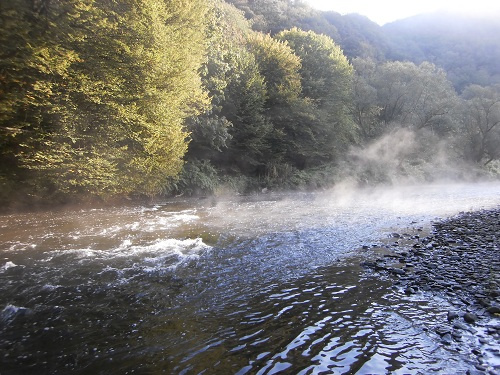 Wupper im Morgennebel