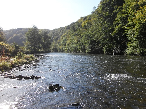 Wupper in der Mittagssonne
