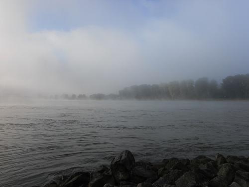 Rhein am Morgen