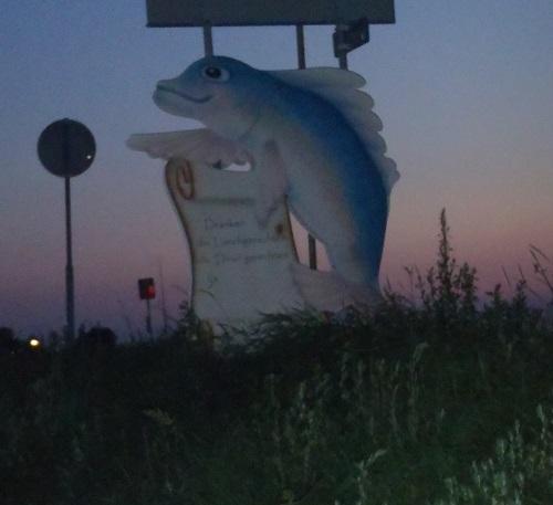 fishandfun3