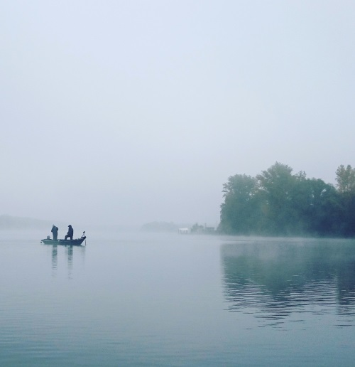 foggy_lake_web