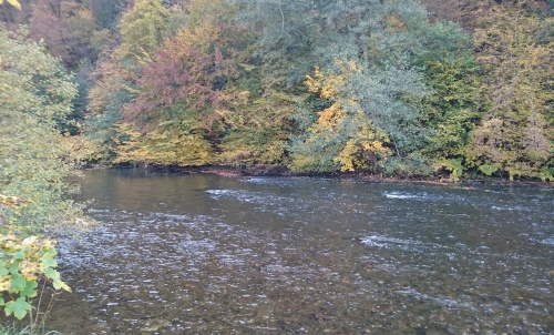 nov_wupper